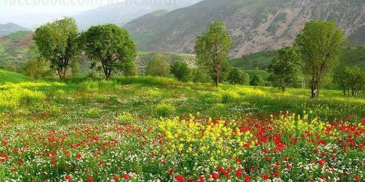 خطة خمسية في كوردستان العراق لاستقبال ملايين السياح      KUR.2