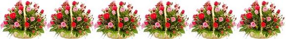 تهنئة لمناسبة عيد ميلاد السيد المسيح وأعياد رأس السنه الميلاديه Salaa.Gl.3