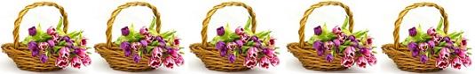 تهاني بمناسبة عيد الصابئة المندائية (دهبا ربا)     Salaa.Gl.8