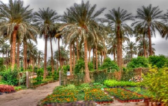 العراق اصلا و فصلا مع الصور